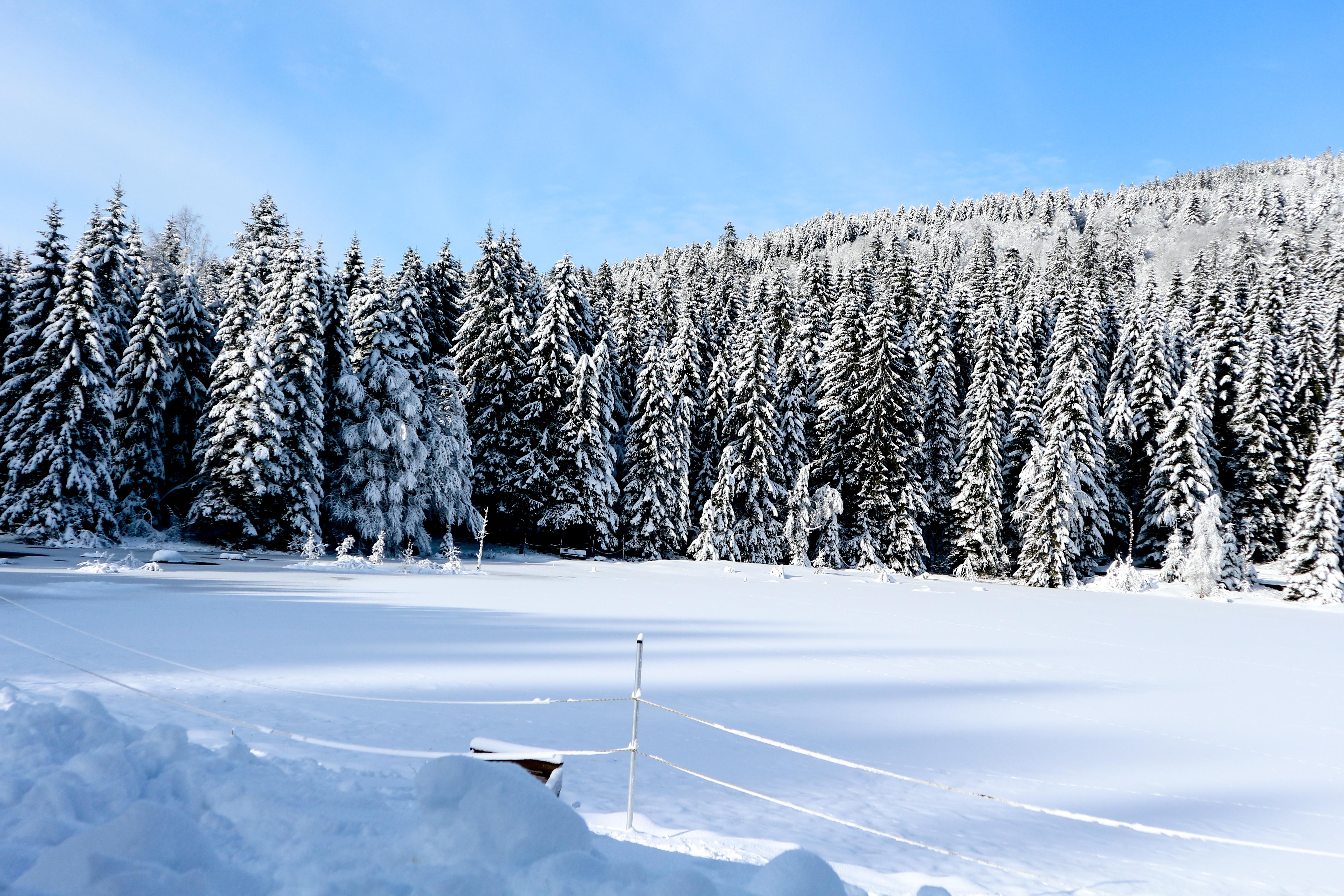 Vacances d'hiver dans les Vosges