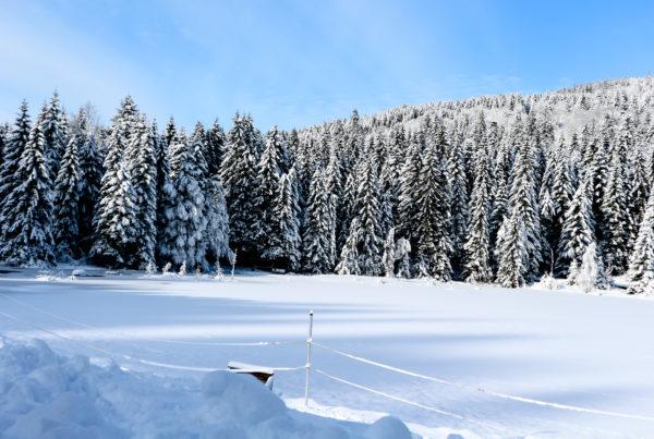 Lac enneigé Vosges